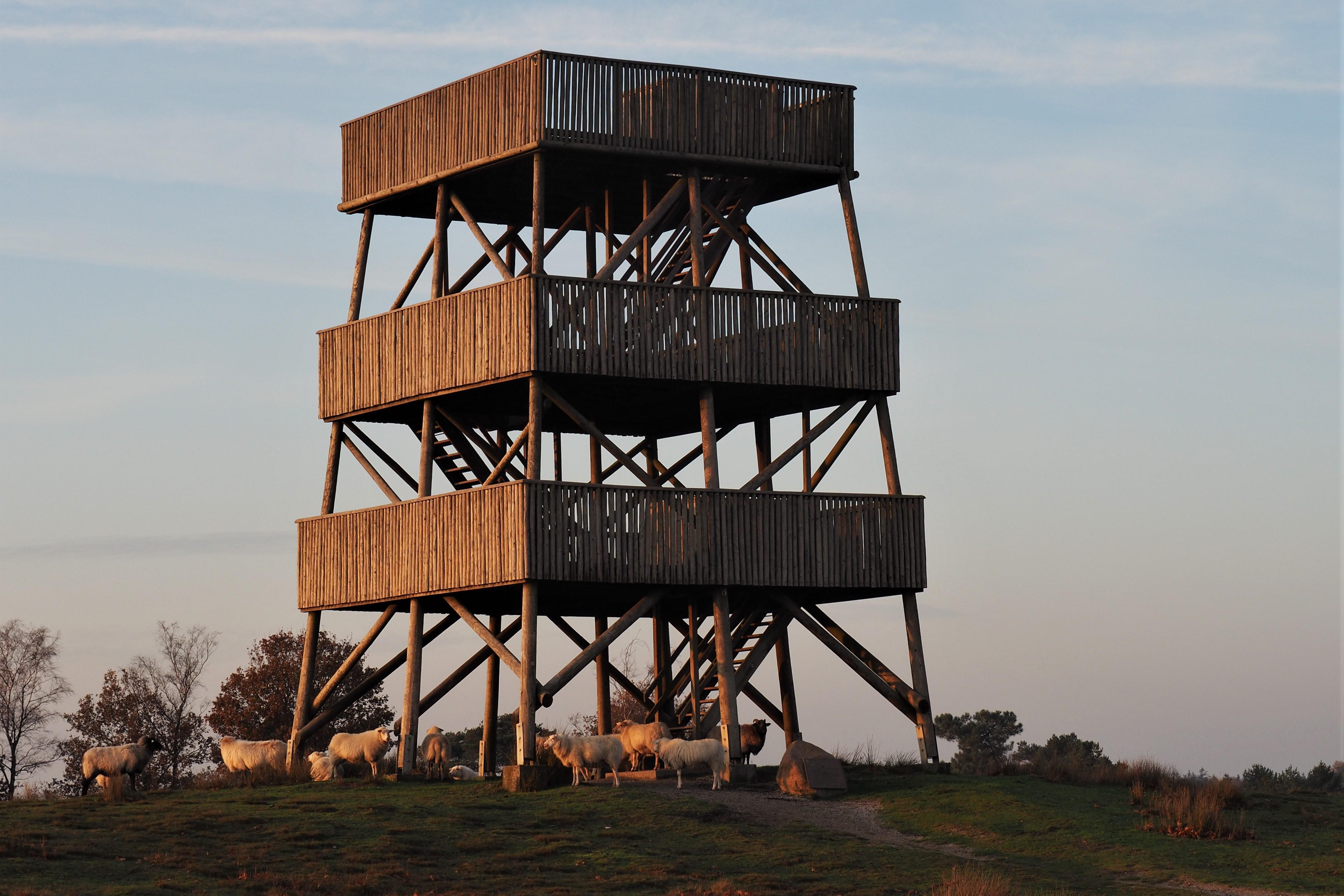 03-De uitkijktoren op het Aekingerzand