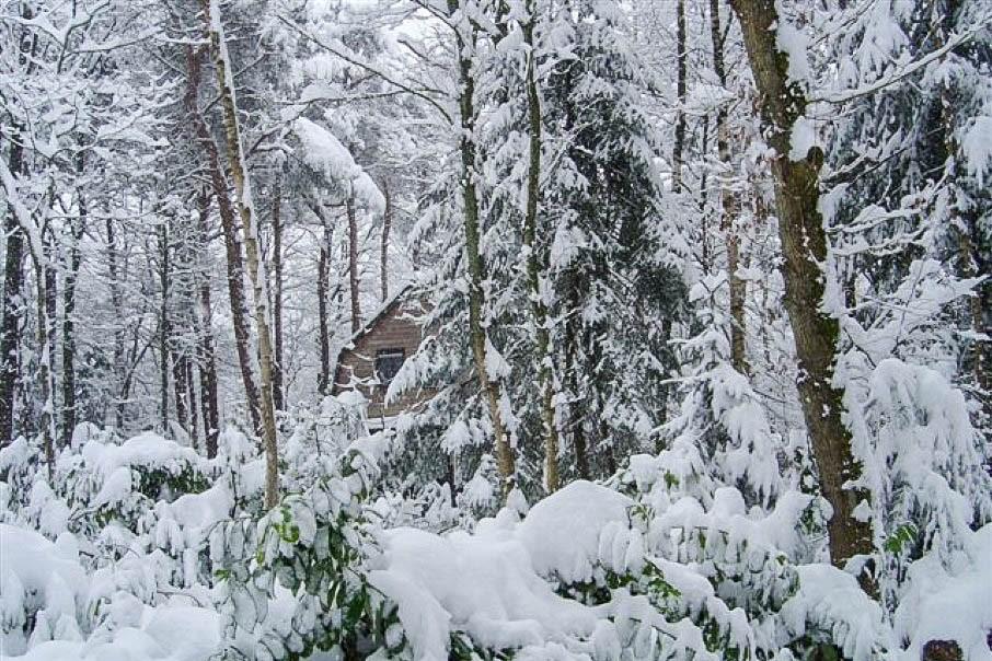 40-Ons vakantiehuis in de sneeuw