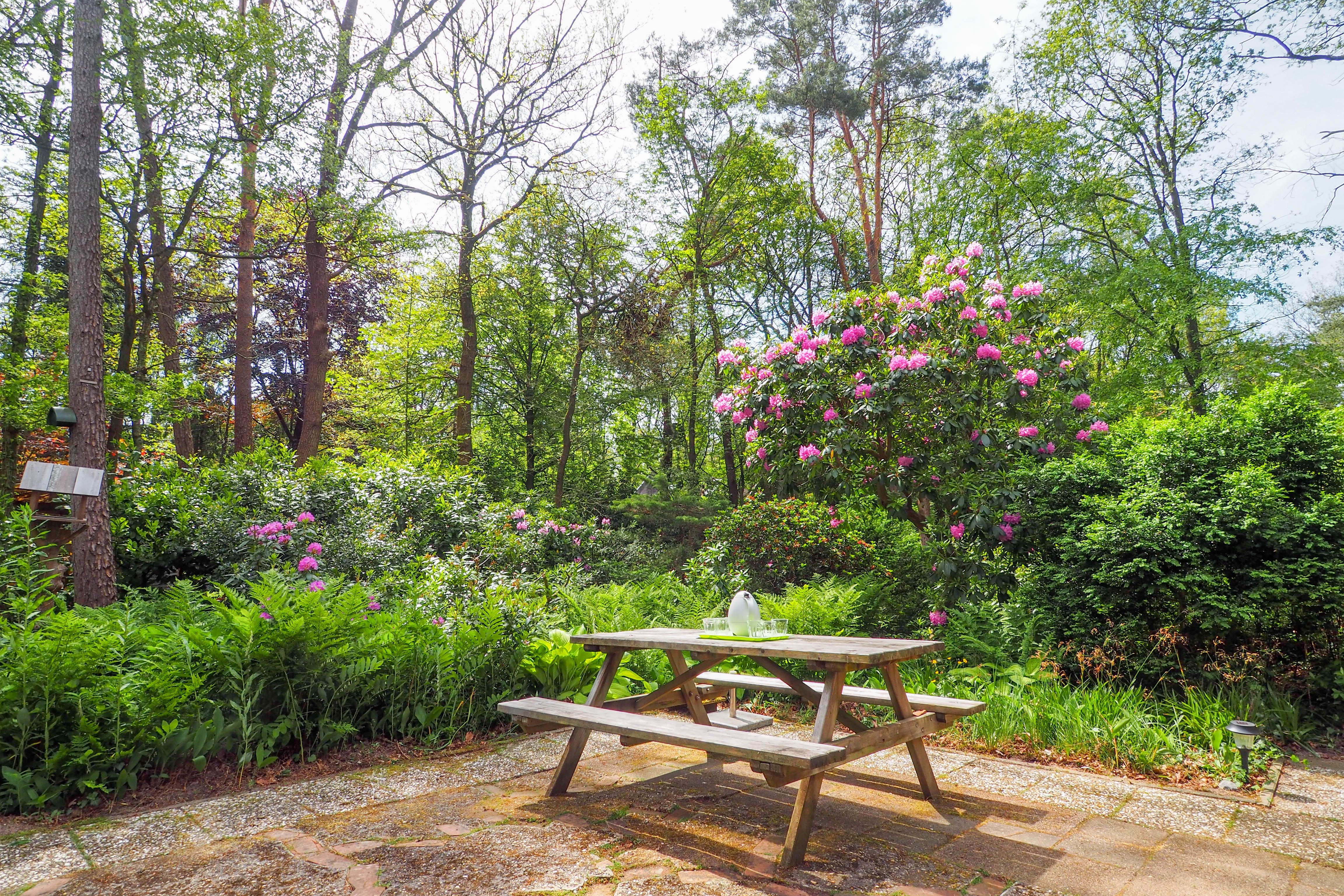 05-Het terras met handige picknickbank